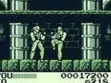 Fighting Simulator 2 in 1 - Nintendo Game Boy