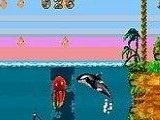 Shamu's Deep Sea Adventures - Nintendo Game Boy Advance