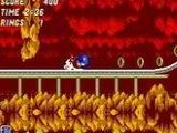 Sonic 2 The Hybridization Project