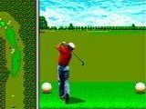 Arnold Palmer Tournament Golf - Sega Genesis