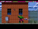The Incredible Hulk - Sega Genesis