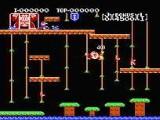 Donkey Kong Jr. - Nintendo NES