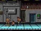 Battletoads and Double Dragon - The Ultimate Team - Nintendo Super NES