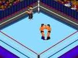 Fire Pro Wrestling 2 - 2nd Bout - NEC PC Engine