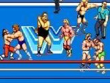 WWF Superstars - mame
